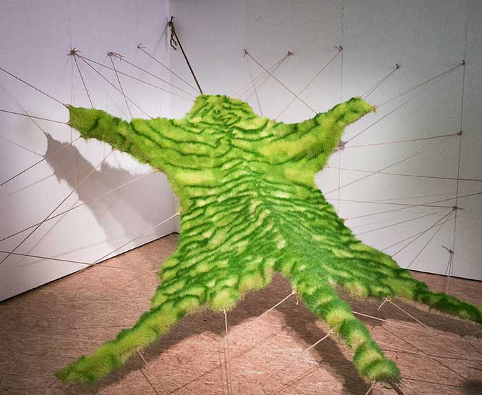 Tiger skin made of grass (Living Skin by Ackroyd & Harvey)